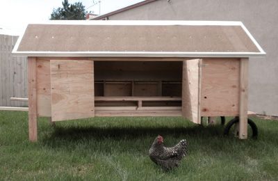 How the Chicken Crossed the Road Chicken Coop