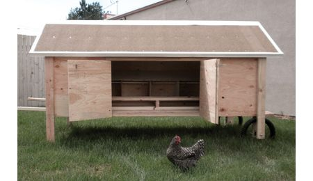 How The Chicken Crossed The Road Coop Design - Tractor Supply Co.