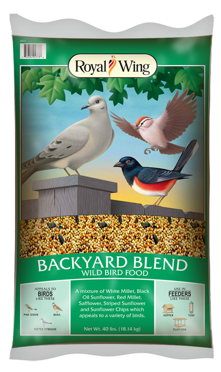 royal wing bird food