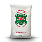 Kentucky 31 Tall Fescue Grass Seed, 50 lb.