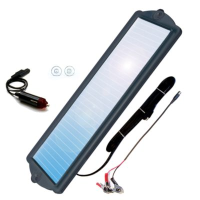 Buy Coleman 2 Watt 12V Solar Battery Maintainer Online