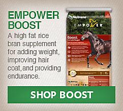 Empower Boost