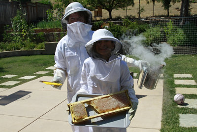 A still shot from the winning video showing a man and a woman in beekeeping suits with a honeycomb rack pulled out and displayed