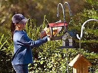 feeding backyard birds and creating habitat with bird houses