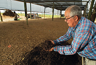 Jack sifting through the soil to see the worms
