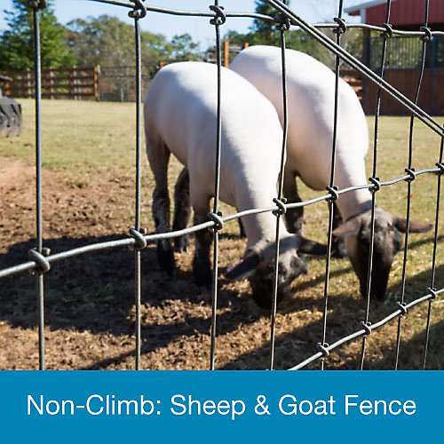Bekaert Sheep & Goat Fence - Tractor Supply Co.