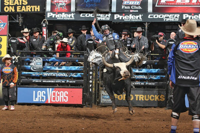 rider on a bull in the ring