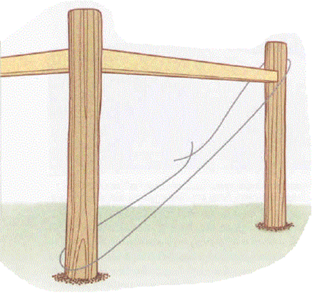 the initial wire stretched between the fence posts diagonnally