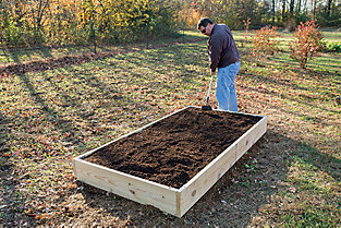 filling the bed with soil