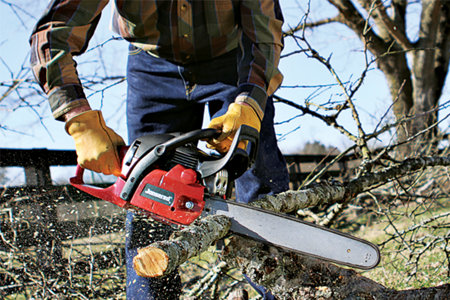 How To Choose the Right Chainsaw - Tractor Supply Co.