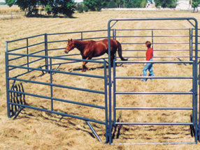 How To Plan And Install A Livestock Corral | General Livestock Care