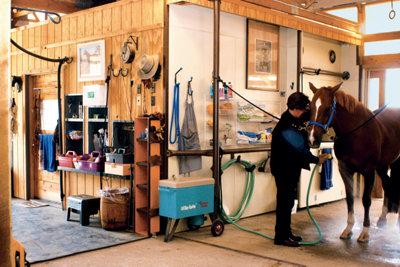Cherry hosing down on of her horses in her barn