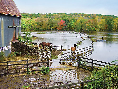 two horses next to a barn surrounded by flooded fields, one horse in the water
