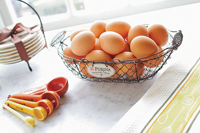 Eggs in a basket - Tractor Supply Co.