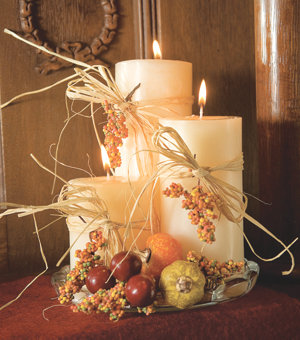 candles with grape wreath along with some apples and gourds around them