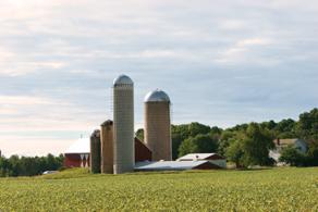 Nicole's family farm