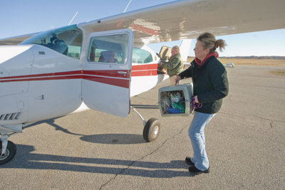 woman loading a pet carrier into a plane