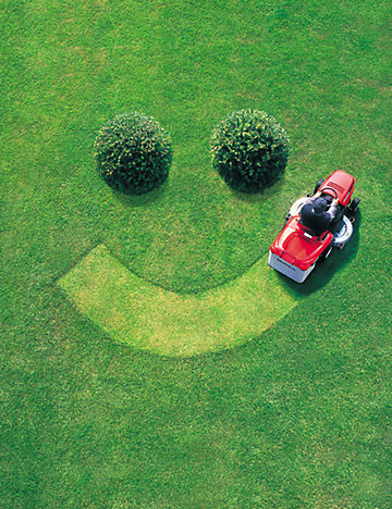 Fun Facts About Lawn Care | Outdoor Living | Tractor Supply Co.