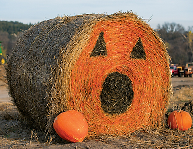 a bale of hay with a giant pumpkin painted on the end of it