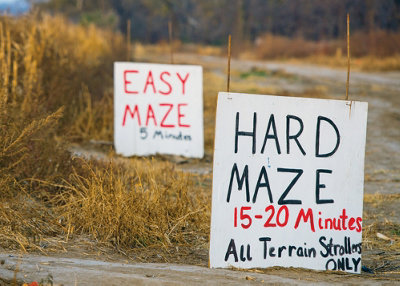 signs for the corn mazes