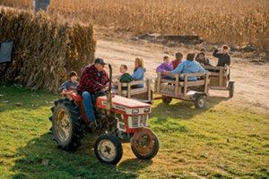 Richard driving a tractor-powered train through his farm