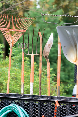 a variety of long-handled garden tools