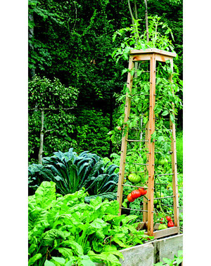 example of a tower in a greenhouse