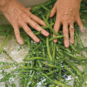 wash the vegetables in cool water