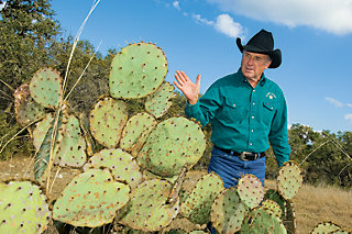 Chuck next to a patch of prickly pear cactus