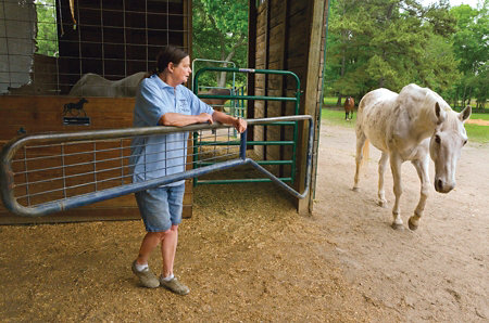 Lori opening the gate into the barn for a white horse