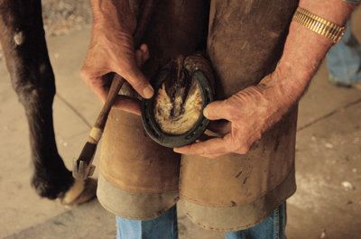 holding a horse's hoof between his knees so he can see to trim it properly