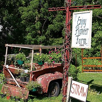 family farm and company farm Dunton family farm is a 6th generation small family farm.