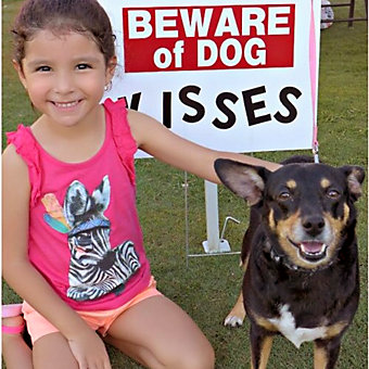 little girl in a chair next to a dog with a sign in the background that reads: Beware of Dog Kisses