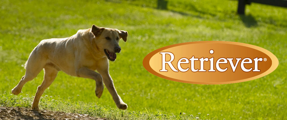 Retriever Dog Products
