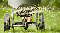 Lawn being fertilized with a lawn spreader.