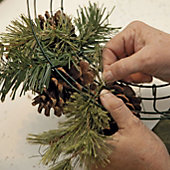 wire the cut evergreen to the frame