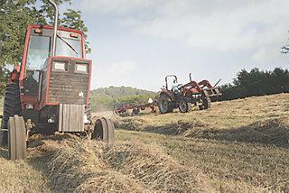 store hay