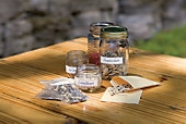 seeds displayed on a table in labeled containers