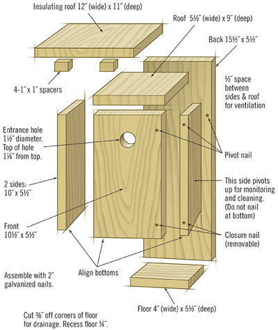 details on constructing a bluebird house
