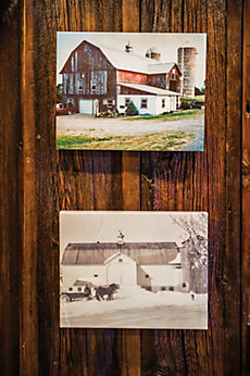 pictures of the old dairy barn
