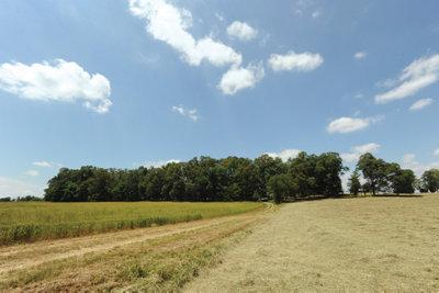 Barber Farm in Rowan County, NC