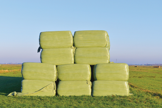 big plastic-wrapped cubes stacked in a field
