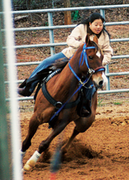 Rebecca riding a horse in competition
