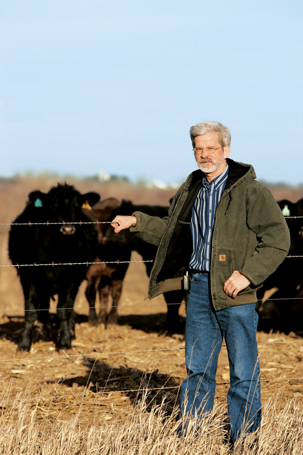 Dave holding onto a wire fence in front of a field of cattle