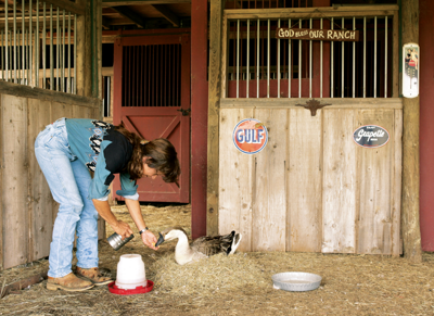Beth taking care of a goose - Tractor Supply Co.