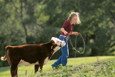 the Peterson's daughter, Kristie Klein, with one of the miniature cows