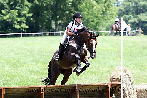 girl riding a showhorse as it jumps a fence