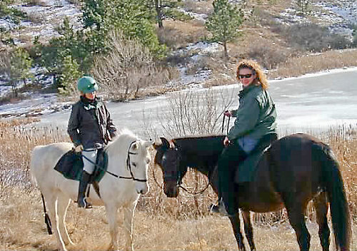 two horses with riders - what horse on left, dark brown horse on right