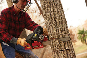 Man with a safety helmet using a chain saw to cut down a tree - Tractor Supply Co.