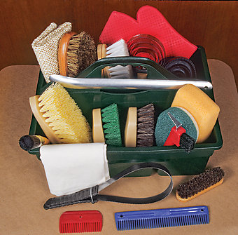 horse grooming supplies in a caddy